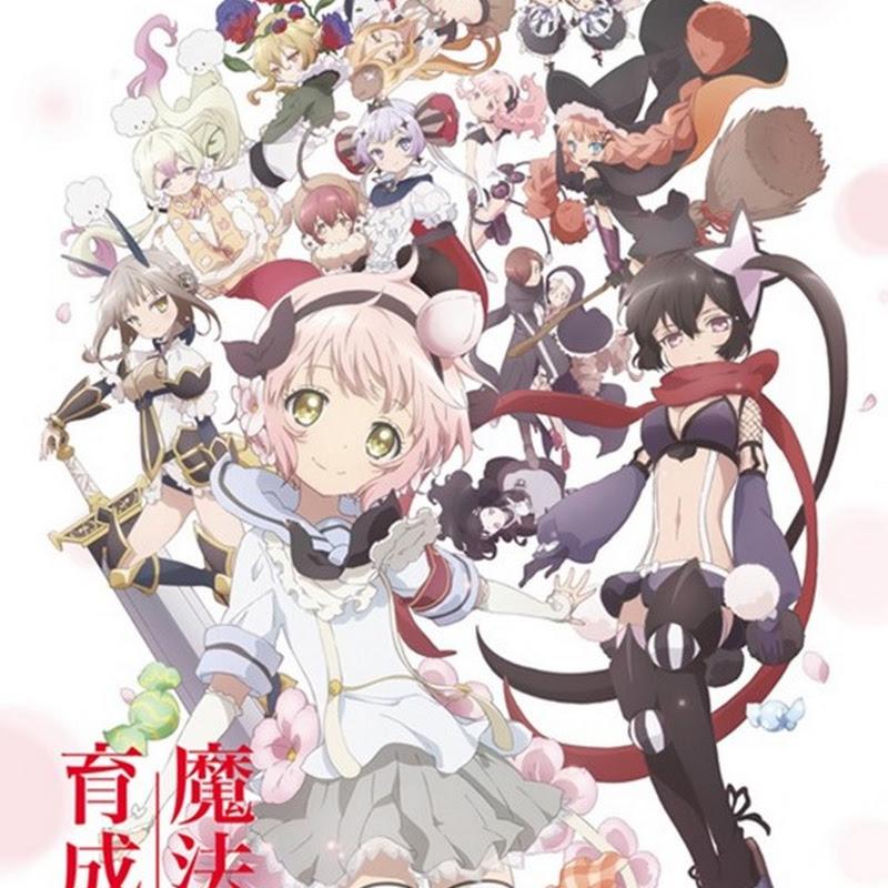 Mahou Shoujo Ikusei Keikaku – trailer para el anime