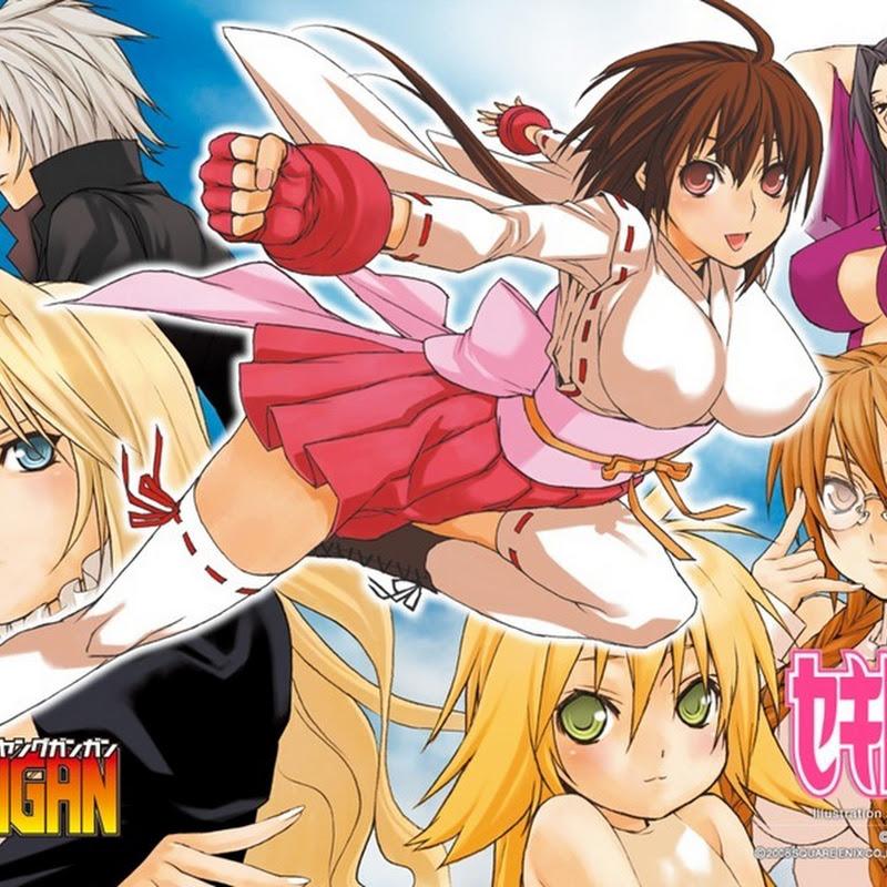Manga de Sekirei terminará en el siguiente volumen